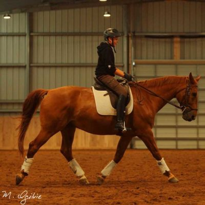 Christian-Bouwers-lessons-training-schooling-800