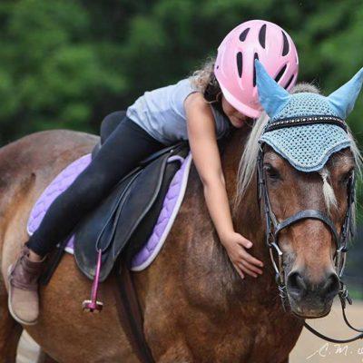 horse-hug-800