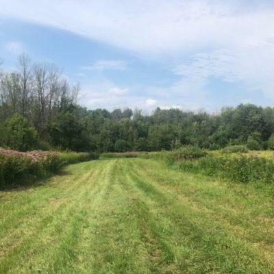 trails1
