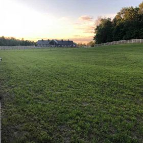 facility-paddocks-5-md