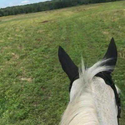 riding-hacking-3